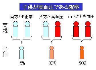 高血圧の遺伝的体質