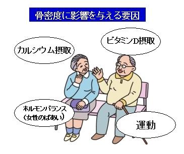 高齢者の骨粗しょう症の原因